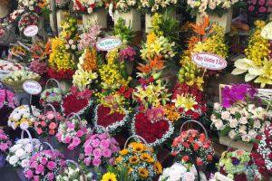 Lang thang chợ hoa Hồ Thị Kỷ đất Sài Gòn