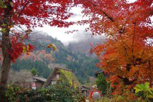 Chia sẻ lịch trình 10 ngày đi du lịch Nhật Bản mùa lá đỏ
