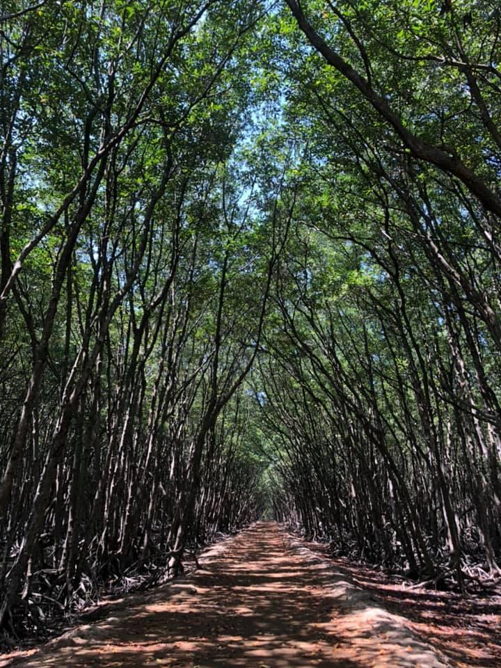 Cần Giờ – Chỉ cách Sài Gòn khoảng 40 cây!